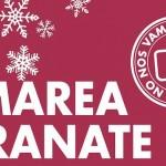 Marea-Granate-Navidad_EDIIMA20141208_0225_13