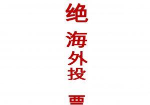 chinono-al-voto-r